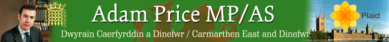 Adam Price MP / AS - Carmarthen East and Dinefwr